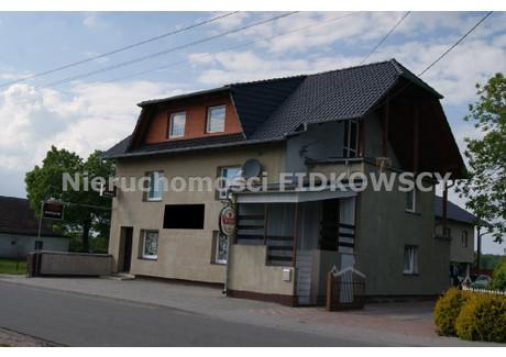 Lokal do wynajęcia - Brzezie, Dobrzeń Wielki, Opolski, 450 m², 10 000 PLN, NET-LW-597