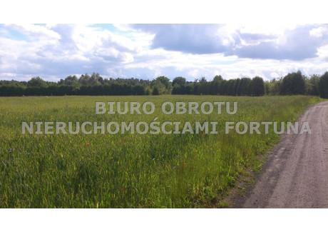 Działka na sprzedaż - Żołędowo, Osielsko, Bydgoski, 10 100 m², 555 500 PLN, NET-FRT-GS-54