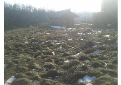 Działka na sprzedaż - Mała Wieś, Niepołomice (gm.), Wielicki (pow.), 2500 m², 200 000 PLN, NET-3663