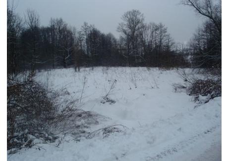 Działka na sprzedaż - Wiśniowa, Myślenicki, 6000 m², 720 000 PLN, NET-2773