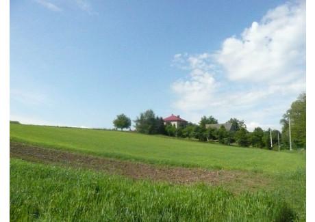 Działka na sprzedaż - Biskupice, Biskupice (gm.), Wielicki (pow.), 1500 m², 150 000 PLN, NET-3793/a