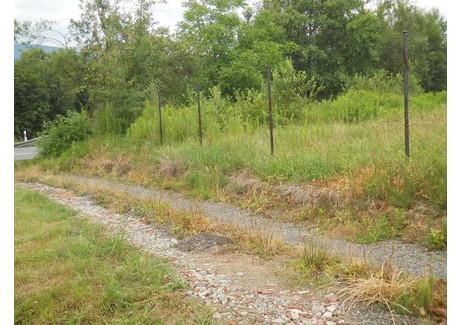 Działka na sprzedaż - Stojowice, Dobczyce (gm.), Myślenicki (pow.), 2180 m², 150 000 PLN, NET-3466/a