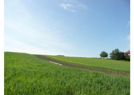 Działka na sprzedaż - Biskupice, Biskupice (gm.), Wielicki (pow.), 5000 m², 600 000 PLN, NET-3793/b