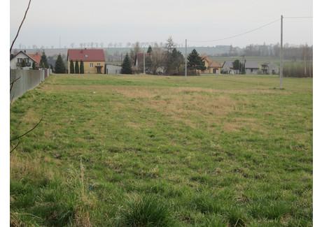 Działka na sprzedaż - Dąbrowa, Niepołomice (gm.), Wielicki (pow.), 1100 m², 121 000 PLN, NET-4200