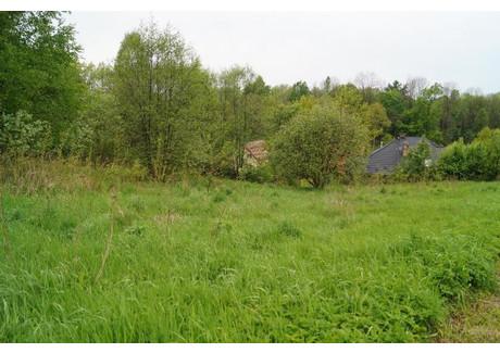 Działka na sprzedaż - Osieczany, Myślenice (gm.), Myślenicki (pow.), 5300 m², 55 000 PLN, NET-M877