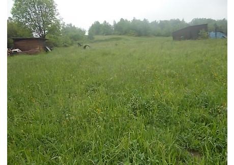 Działka na sprzedaż - Borzęta, Myślenice (gm.), Myślenicki (pow.), 5900 m², 160 000 PLN, NET-2014/b