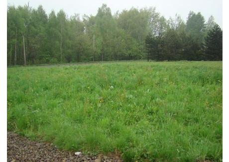 Działka na sprzedaż - Siepraw, 1200 m², 150 000 PLN, NET-2914