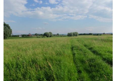 Działka na sprzedaż - Siedlec, Bochnia (gm.), Bocheński (pow.), 18 000 m², 190 000 PLN, NET-3905