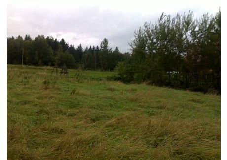 Działka na sprzedaż - Myślenice, 1000 m², 50 000 PLN, NET-m264