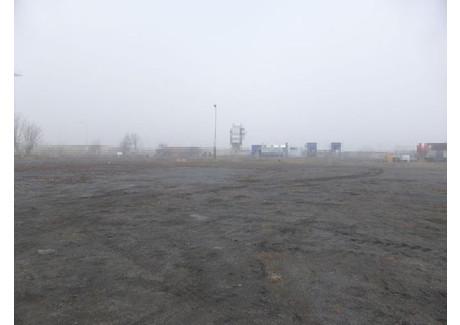 Działka do wynajęcia - Stargard, Stargardzki, 7000 m², 6000 PLN, NET-GAN20588