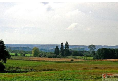 Działka na sprzedaż - Jelenino - Pojezierze Drawskie, Ostrowice, Drawski, 54 300 m², 120 000 PLN, NET-500210