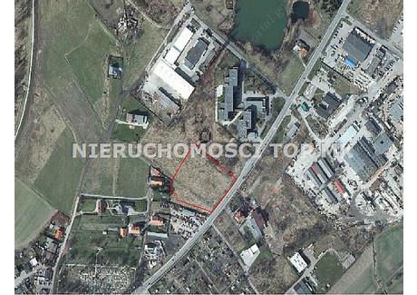 Działka do wynajęcia - Ostróg, Racibórz, Raciborski, 7838 m², 500 PLN, NET-TOP-GW-25