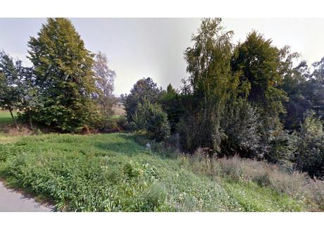 Działka na sprzedaż - Kunów, Chełmiec, Nowosądecki, 1600 m², 96 000 PLN, NET-501/358/OGS