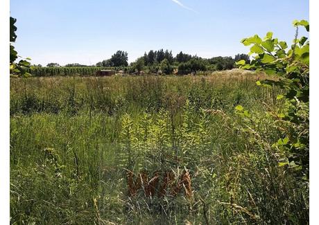 Działka na sprzedaż - Grójec, Grójecki, 1300 m², 84 000 PLN, NET-110/454/OGS