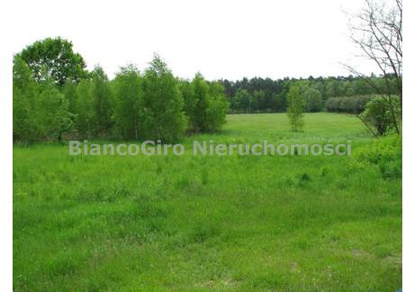 Działka na sprzedaż - Kromnów, Brochów, Sochaczewski, 14 982 m², 250 000 PLN, NET-BGN-GS-18