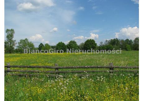 Działka na sprzedaż - Piaski Duchowne, Brochów, Sochaczewski, 32 500 m², 487 500 PLN, NET-BGN-GS-19