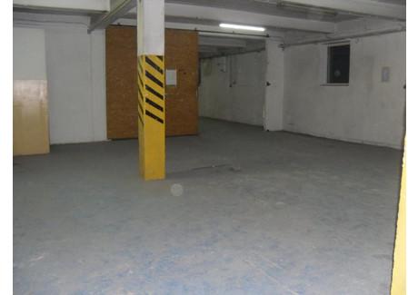 Magazyn, hala do wynajęcia - Wieliczka, Wielicki (pow.), 485 m², 6547 PLN, NET-101