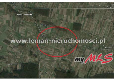 Działka na sprzedaż - Kozłówka, Kamionka, Lubartowski, 5067 m², 128 000 PLN, NET-LEM-GS-2764