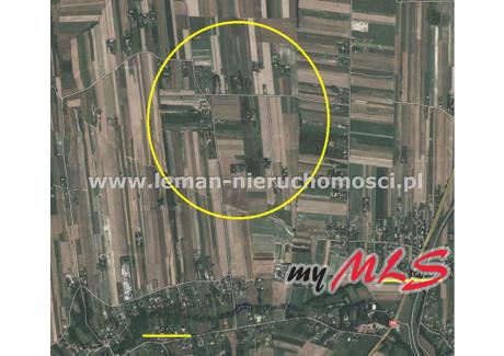 Działka na sprzedaż - Dys, Niemce, Lubelski, 1400 m², 120 000 PLN, NET-LEM-GS-5365