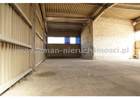Magazyn do wynajęcia - Czechów Górny, Lublin, Lublin M., 220 m², 3520 PLN, NET-LEM-HW-6492