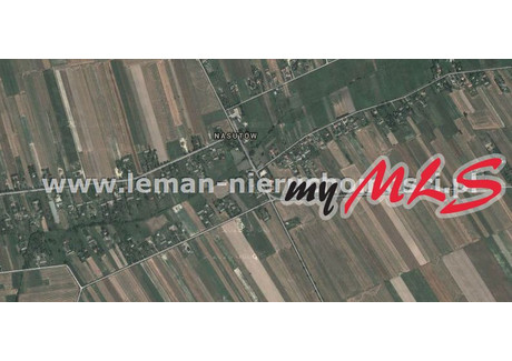 Działka na sprzedaż - Nasutów, Nasutów, Niemce, Lubelski, 14 300 m², 499 000 PLN, NET-LEM-GS-5992