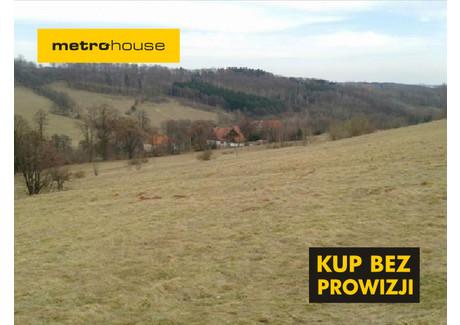 Działka na sprzedaż - Krajanów, Nowa Ruda, Kłodzki, 51 100 m², 380 000 PLN, NET-QESU892