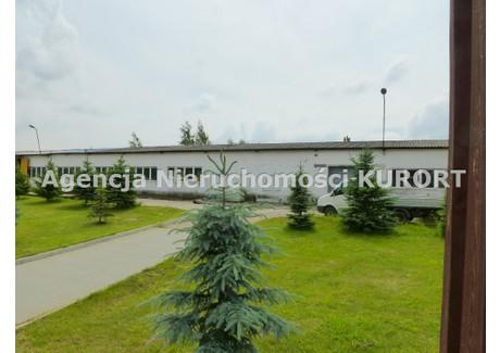 Działka na sprzedaż - Aleksandrów Kujawski, Aleksandrowski, 37 890 m², 3 000 000 PLN, NET-GS-685