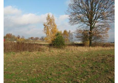 Działka na sprzedaż - Serock, Legionowski, 12 242 m², 612 100 PLN, NET-153