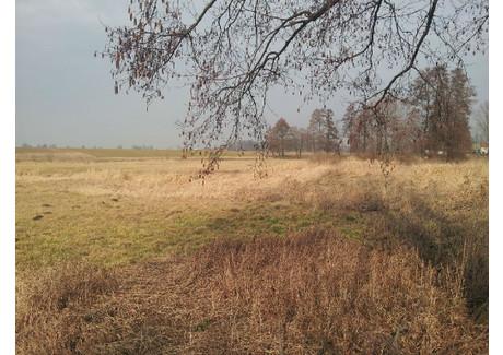 Działka na sprzedaż - Sieradz, Sieradzki, 1200 m², 36 000 PLN, NET-KWK-GS-1543-1