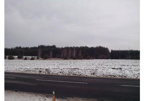 Działka na sprzedaż - Dzierzązna, Warta, Sieradzki, 6000 m², 50 000 PLN, NET-KWK-GS-1519-1