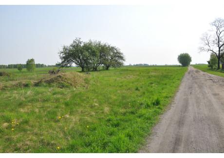 Działka na sprzedaż - Ligota, Burzenin, Sieradzki, 1000 m², 30 000 PLN, NET-KWK-GS-90-1