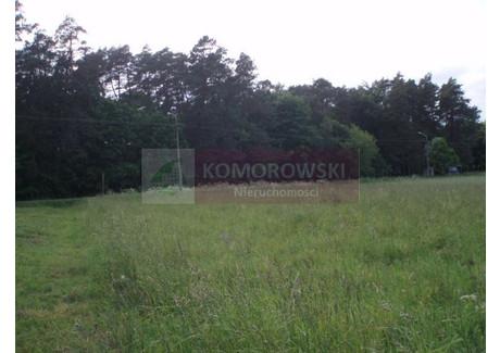 Działka na sprzedaż - Pniewo-Czeruchy, Regimin (gm.), Ciechanowski (pow.), 8018 m², 59 000 PLN, NET-C95/2014