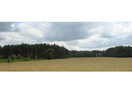 Działka na sprzedaż - Gąsocin, Nowodworski, 1600 m², 20 000 PLN, NET-2713
