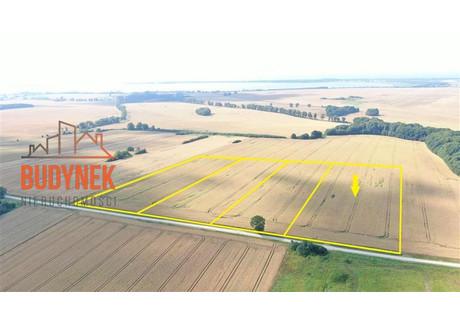 Działka na sprzedaż - Kopnica, Darłowo, Sławieński, 12 249 m², 430 000 PLN, NET-WD0487