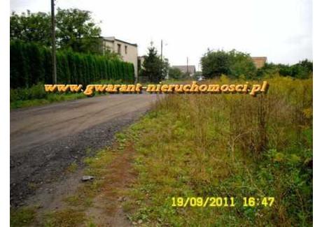 Działka na sprzedaż - Starołęka, Nowe Miasto, Poznań, 900 m², 166 500 PLN, NET-17390724