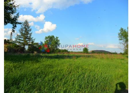 Działka na sprzedaż - Baniocha, Góra Kalwaria, Piaseczyński, 8000 m², 960 000 PLN, NET-6934/2566/OGS