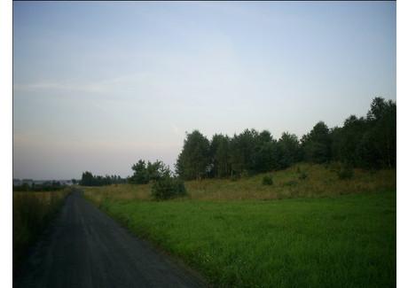 Działka na sprzedaż - Biesal, 6300 m², 315 000 PLN, NET-13663/00260S/2010