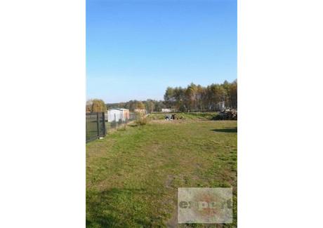 Działka na sprzedaż - Babiczki, Lutomiersk, Pabianicki, 1000 m², 120 000 PLN, NET-EXP-GS-6762