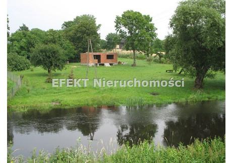 Działka na sprzedaż - Dąbie Gm., Kolski, 7800 m², 130 000 PLN, NET-GS-59