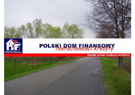 Działka na sprzedaż - Komorów, Kampinos, Warszawski Zachodni, 23 900 m², 2 490 000 PLN, NET-324109