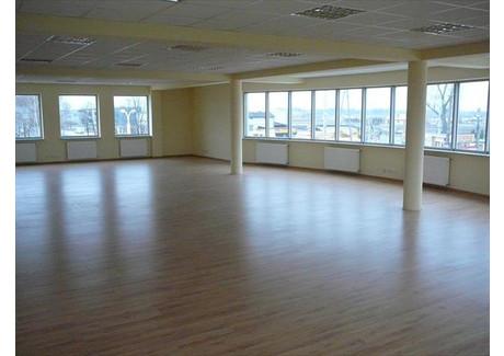 Biuro do wynajęcia - Sokołów, Michałowice, Pruszkowski, 1200 m², 36 000 PLN, NET-313576