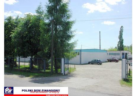 Magazyn do wynajęcia - Nowy Dwór Mazowiecki, Nowodworski, 1000 m², 12 000 PLN, NET-324928