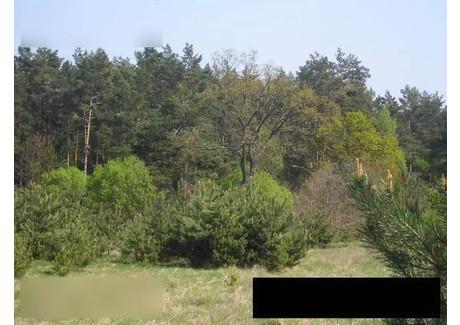 Działka na sprzedaż - okolica Gostyniec Pobierowo, Rewal (gm.), Gryficki (pow.), 1009 m², 32 000 PLN, NET-gzs4454127