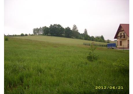Działka na sprzedaż - Pisaczów, Siekierczyn (gm.), Lubański (pow.), 2700 m², 55 000 PLN, NET-22