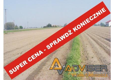 Działka na sprzedaż - Nowy Drzewicz, Wiskitki, Żyrardowski, 26 100 m², 479 000 PLN, NET-ADV-GS-20111-22