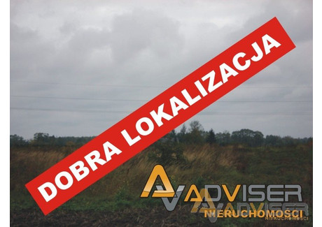 Działka na sprzedaż - Opypy, Grodzisk Mazowiecki, Grodziski, 6043 m², 450 000 PLN, NET-ADV-GS-20356-22