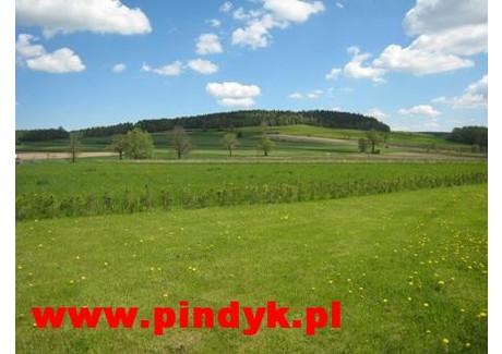 Działka na sprzedaż - Wojcieszyce, Stara Kamienica, Jeleniogórski, 10 000 m², 520 000 PLN, NET-PIN19910