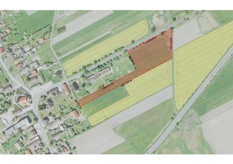 Działka na sprzedaż - Jełowa, Łubniany, Opolski, 11 700 m², 224 000 PLN, NET-392