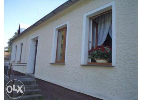 Dom na sprzedaż - Cedynia, Gryfiński, 200 m², 465 000 PLN, NET-346