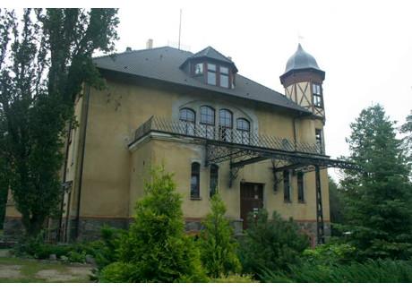Pensjonat na sprzedaż - Poganice, Potęgowo, Słupski, 1410 m², 2 700 000 PLN, NET-RE01028